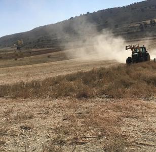 Trabajos  desbrozado en restos de cosecha girasoles