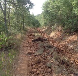 Rehabilitación camino en Sedano ( Burgos )